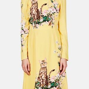764ac4a9ce5 Dolce   Gabbana Dresses - Dolce Gabbana Bengali cat -roses print dress IT 38